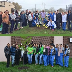 American Institute students and staff plant trees for Earth Day 2017