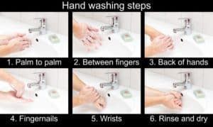 demonstrates the steps to wash hands to prevent the spread of disease